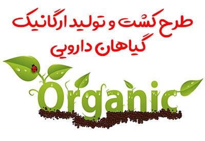 طرح کشت و تولید ارگانیک گیاهان دارویی